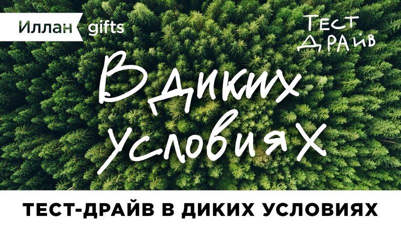 Тест драйв Иллан gifts — В диких условиях
