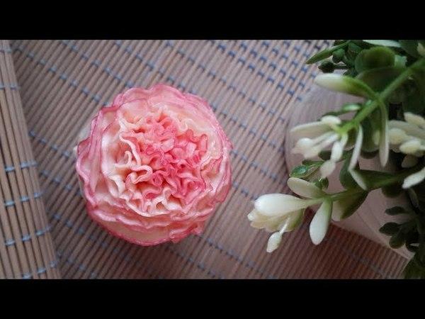 Hướng dẫn bắt hoa Cẩm Chướng với đuôi 124k