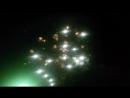 🎆🎇✨наш праздничный салют✨🎇🎆