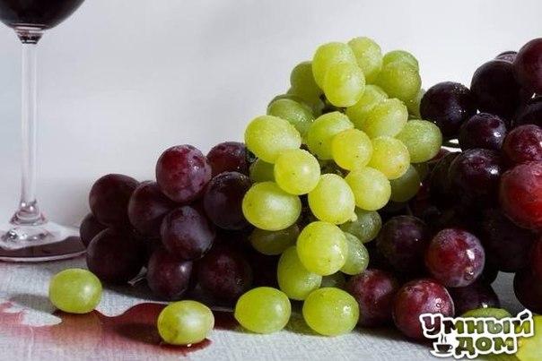 15 фруктов и ягод, ради которых мы ждем лето Лето — сезон здоровья. Мы не только заряжаемся бодростью и хорошим настроением на целый год, но и запасаемся витаминами, минералами и микроэлементами. И помогают нам в этом ягоды и фрукты, появления которых мы ждем с огромным нетерпением. Для сегодняшнего обзора мы составили чек-лист из 15 самых полезных и вкусных летних фруктов и ягод, которые ни за что нельзя пропустить. 1. Клубника Клубника — незаменимый источник полезных веществ. Эта ягодка…