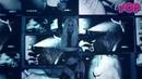 Britney Spears feat. Rich The Kid en On It