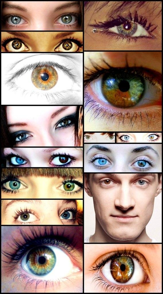 Глаза разного цвета как сделать 559