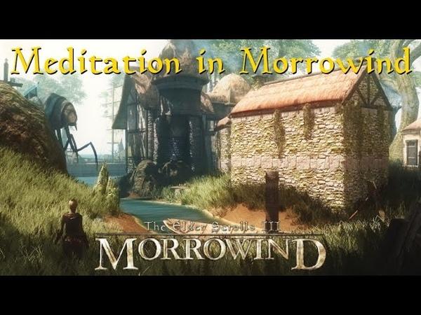 The Elder Scrolls III: Morrowind 'Meditation in Morrowind' (A Relaxing Music Compilation)