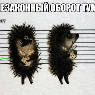 Максим Русов
