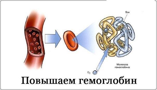 На заметочку: 7 главных продуктов для повышения гемоглобина. 1. Морковный сок. Наибольший эффект, если пить 3-4 раза в неделю по стакану. На один стакан сока приходится около 500 грамм
