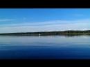 Animal Planet на Чудском озере.