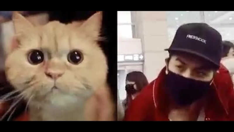 Jhonny has a beautiful cute round eyes takes it after his appa huh
