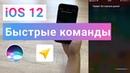 IOS 12 Siri запускает маршрут в Яндекс Навигатор через Быстрые Команды Siri Shortcuts