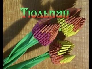Модульное оригами. Тюльпан из бумаги  (3D origami)