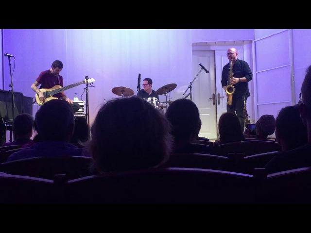 Viridian Trio Tall Lanky