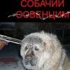 ДИДУР - УБИЙЦА И АФЕРИСТ (ПРИЮТ СМЕРТИ)!