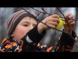 Віталій Кличко прикрасив Великоднє дерево і привітав українців зі святом Пасхи