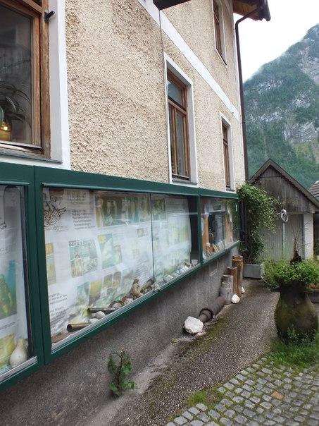 уличные витрины музея