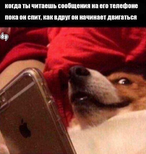 Фото №418666072 со страницы Аллы Копчинской