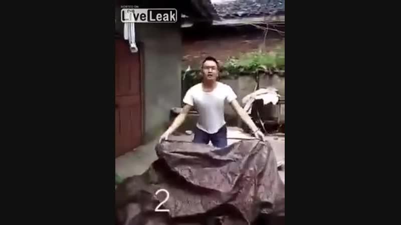 китайский фокус с исчезновением
