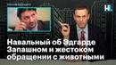Навальный об Эдгарде Запашном и жестоком обращении с животными