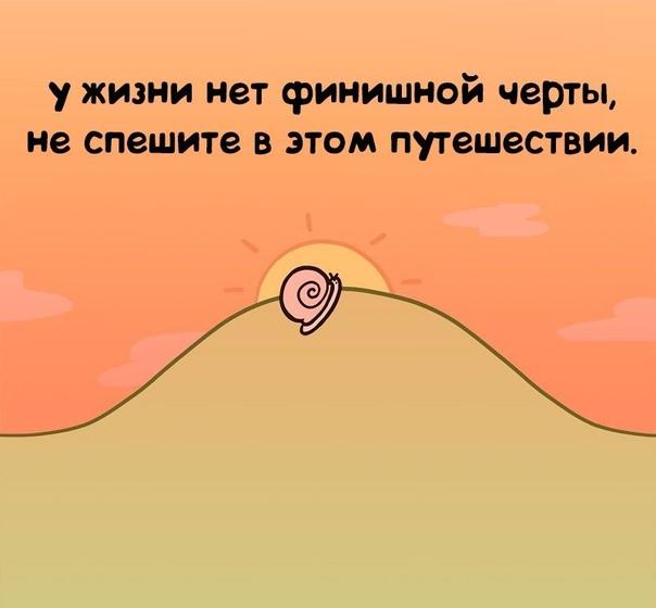 Не спешите жить