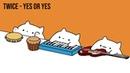 Bongo Cat - TWICE YES or YES (K-POP)
