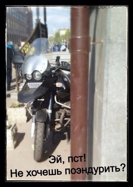 7P6nT1WTskE.jpg