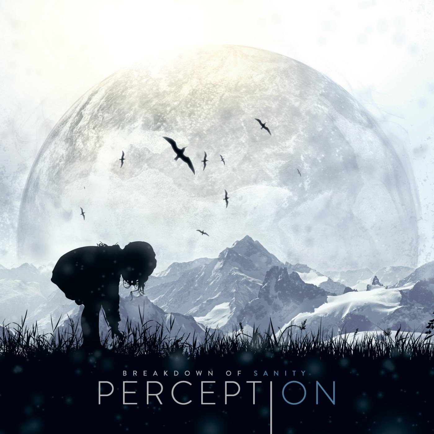 Breakdown Of Sanity - Perception (2013)