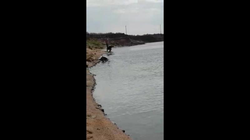 рибалка нура озенi