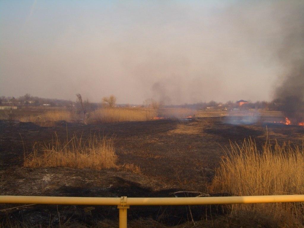 МЧС: В пригороде Таганрога и области зарегистрировано увеличение ландшафтных пожаров