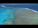 Королевство океанов. 3 серия. Народ Рифов