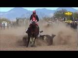 VARIOS ACCIDENTES EN CARRERAS DE CABALLO LOS MEJORES VIDEOS DE CAIDAS