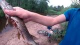 Вело- рыбалка, Активный отдых, Володя 23 Яницкий, Спининг, Щука на реке Меглинка