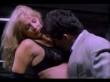 Химия тела 4 / Body Chemistry 4 (1995) Jim Wynorski [RUS] DVDRip
