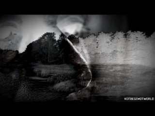 [WorldBegemotKot † Страшные истории †] Страшные истории на ночь - ЛЕСНЫЕ ТВ*РИ Страшилки на ночь,мистика.
