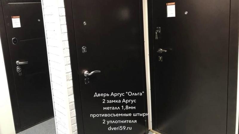 Аргус Ольга дверь металлическая