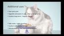 Ветеринарные транквилизаторы и седативные препараты Veterinary Tranquilizers and Sedatives