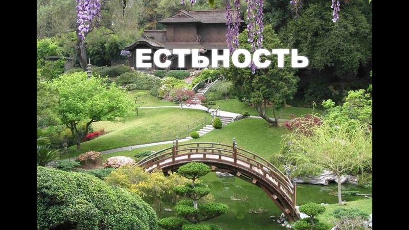 Естьность - Тотут