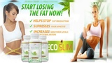 Eco Slim In Pakistan Authentic Formula for Weight Loss 03009791333