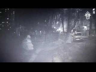 Убийство женщины в Москве попало на видео