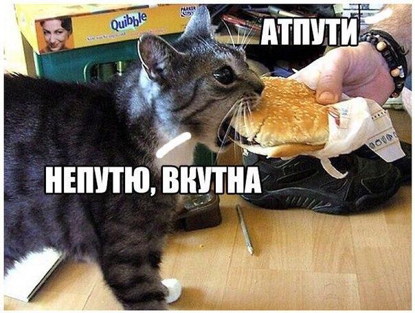 Фото №456254938 со страницы Евгения Обухова