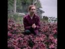 Flowers LostInSpace