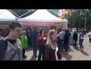 Фестиваль национальных кухонь 2018 СПБ- Жар-Птица - Осетинские пироги - Лиговский 89