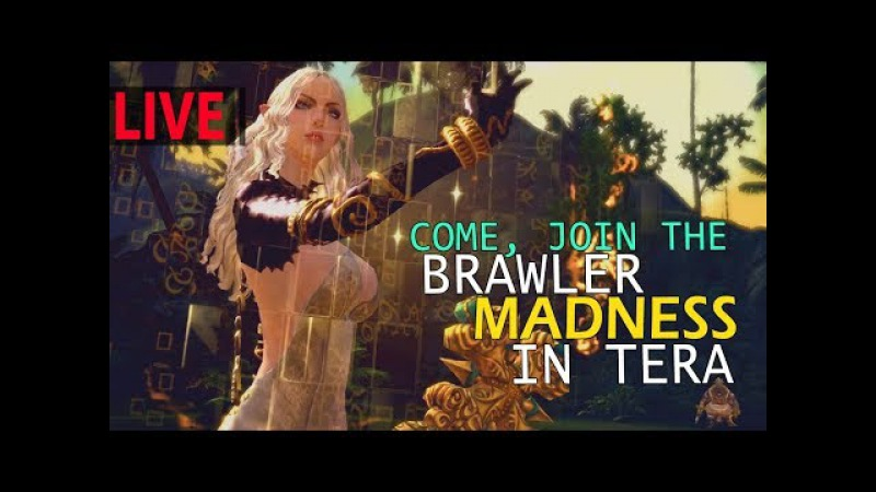 Come, Join The Brawler Madness In The Epic Action MMORPG - TERA Online!