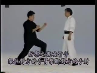 北派拳法技击精要 (fighting techniques for 7 famous styles) 徐纪 adam hsu Kung Fu Usage 7 S
