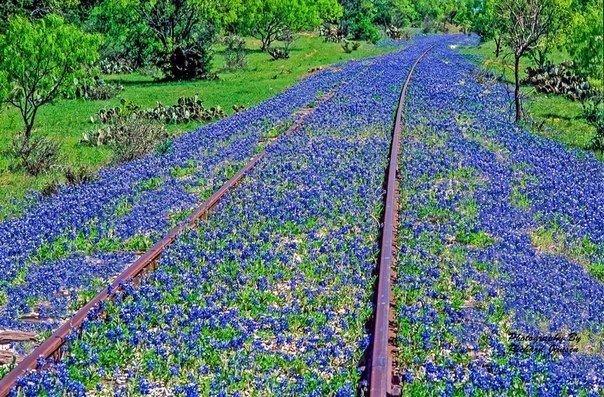 Старая железная дорога в Техасе,
