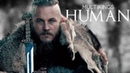 ♚ MultiKings Human
