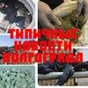 Типичные новости Волгограда