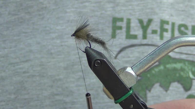 Mayfly CDC
