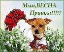 Фото Сони Зборовской №24