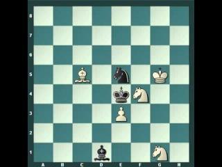 Решение этюда Гурвича