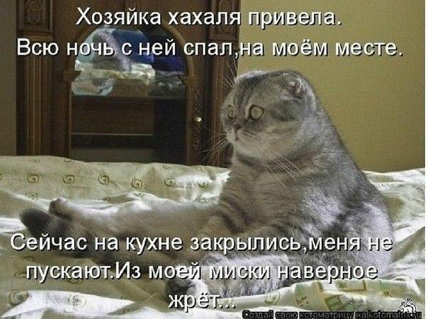 http://cs312324.vk.me/v312324989/6ba5/H21ChUqXUmc.jpg