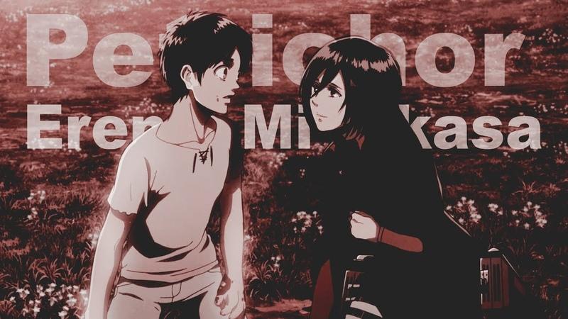Attack on Titan - Eren and Mikasa AMV (Эрен и Микаса)