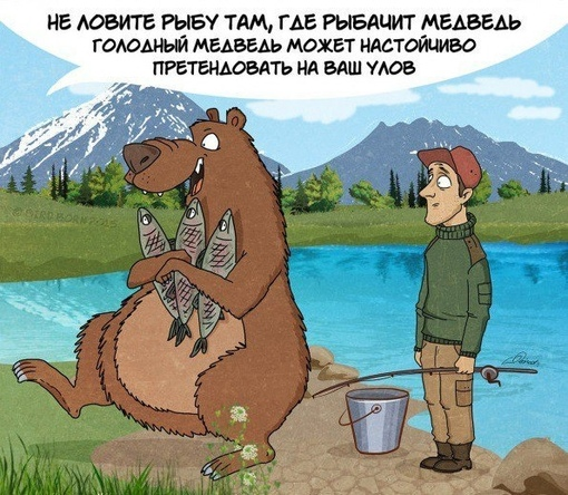 Что нам нужно знать о медведях.